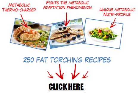 Metabolic Cooking 2